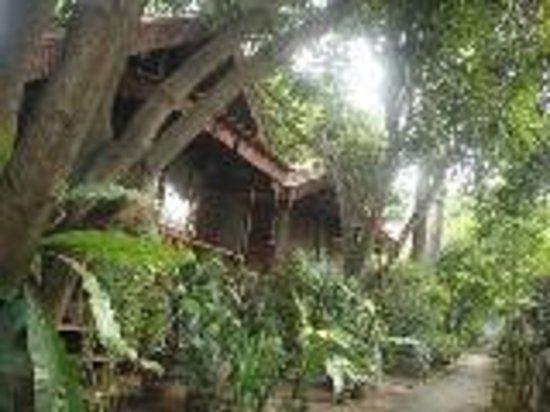 The Garden House: Bungalows & Terrage