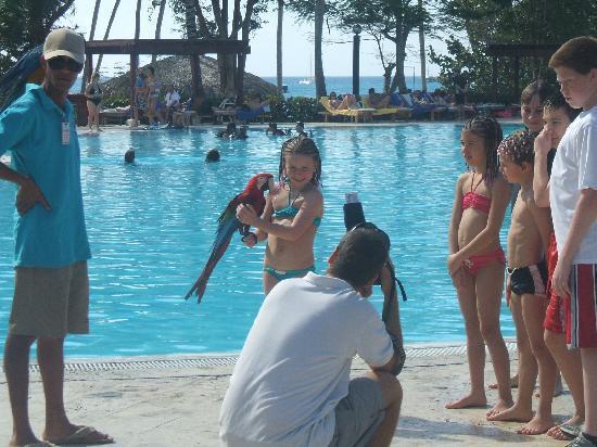 Dreams La Romana Resort & Spa: vous étés au paradis piscine mer le sable enfin tous