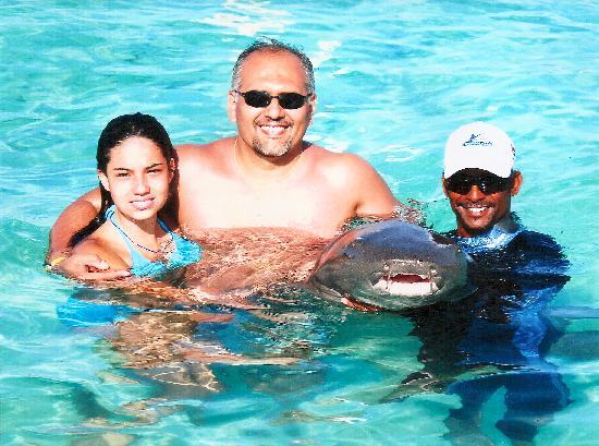 Grand Bahia Principe Bavaro: Nadando con Tiburones