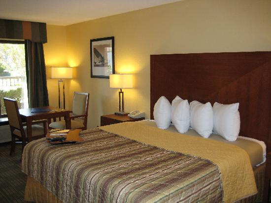 Days Inn Jacksonville Airport: King Bed