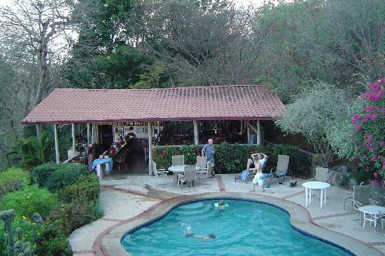 Rancho Armadillo Estate: Pool