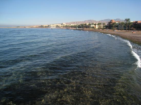 Movenpick Resort & Spa Tala Bay Aqaba: Clear Red Sea water