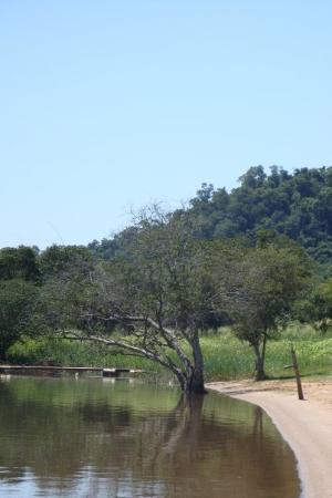 Bilde fra San Ignacio