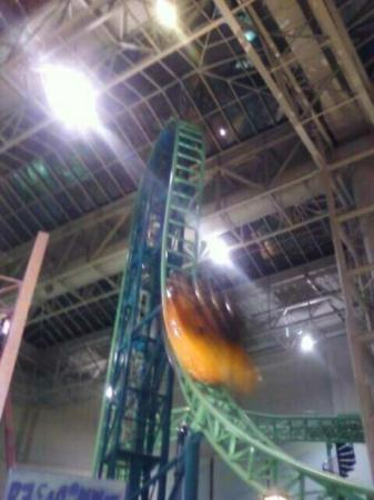 Nickelodeon Universe: Rollercoaster in MOA. Its a copy of spongebob rollercoaster. :)