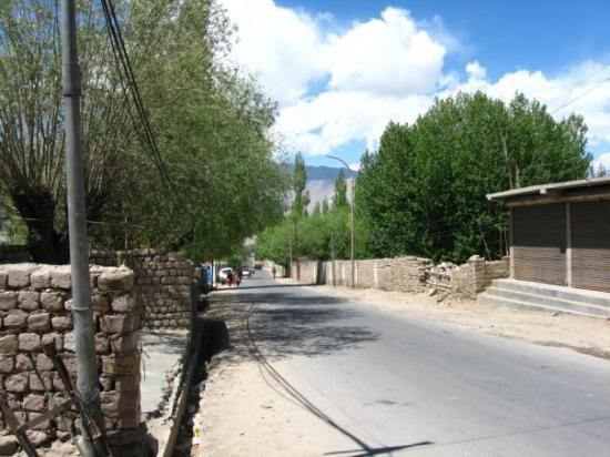 Leh, India: Raw brick and stone walls - that's what houses are made of in Ladakh.