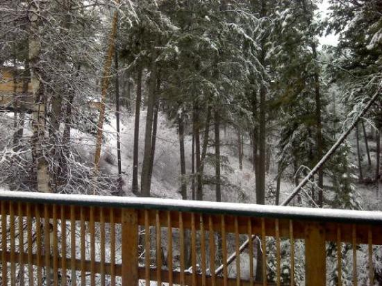 Bigfork, มอนแทนา: After 50 degrees the last week this is a shocker LOL.  So beautiful, I love it when the snow cli