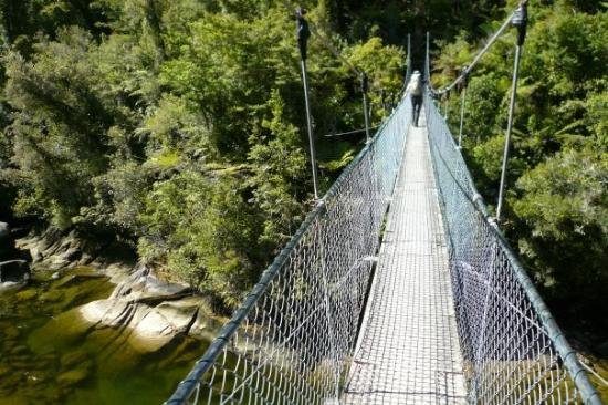 Abel Tasman National Park, New Zealand: The First of many swign bridges; they dont call them swing bridges for nothing!