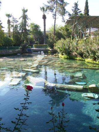 Cleopatra Pools: Cleopatras Pool at Pammukalle