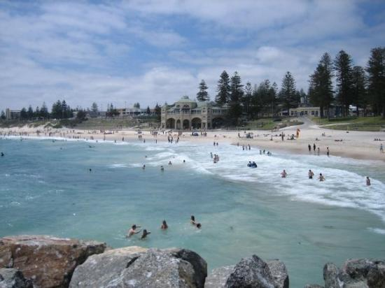 Cottesloe Picture