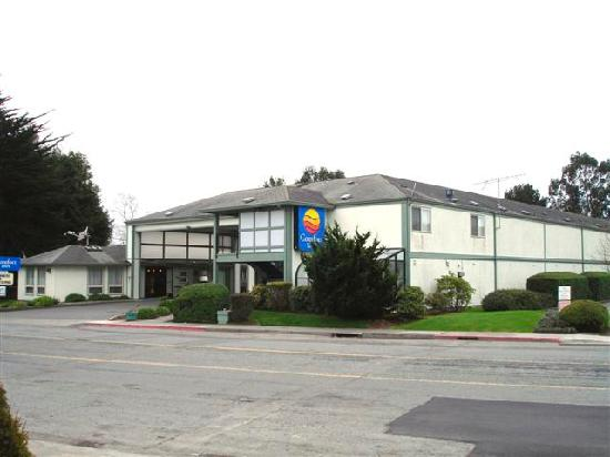 Days Inn & Suites Arcata: Comfort Inn---Arcata, CA