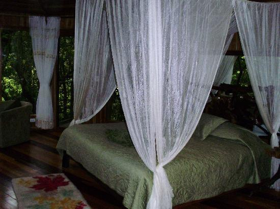 Hidden Canopy Treehouses Boutique Hotel: Indoor view Glade