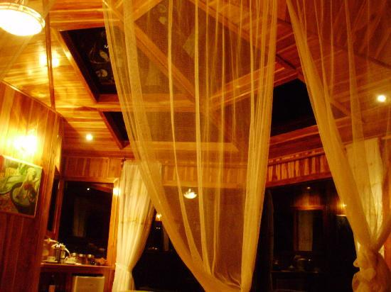Hidden Canopy Treehouses Boutique Hotel: Skylights...at night
