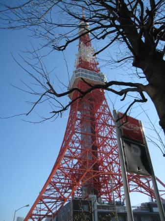 Tokyo Tower: 多厲害這東京鐵塔害我想到蘇子為你還沒還我我的東京鐵塔