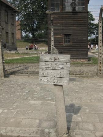 Bilde fra Auschwitz-Birkenau Statsmuseum