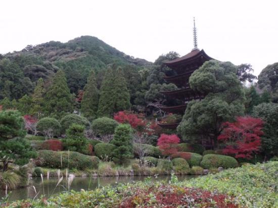 Yamaguchi صورة فوتوغرافية