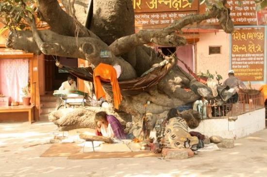 Rishikesh (Gange)  squatte chelou