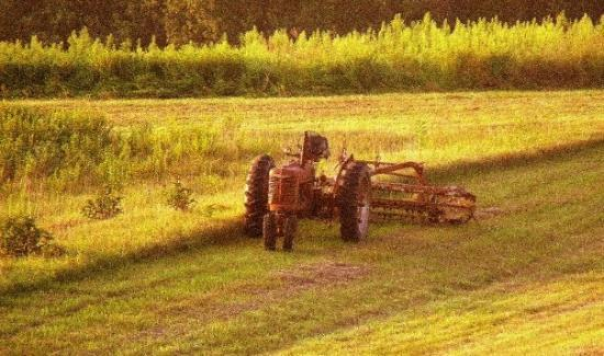 Odessa, MO: I love old tractors and couldn't resist the shade of light coming across the field at sunset