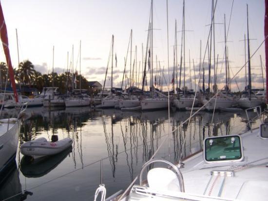 Tortola Marina at Sunrise.