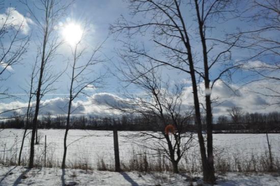 Onondaga, Мичиган: love this pic