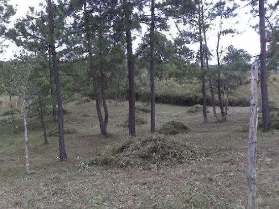 Siguatepeque, ฮอนดูรัส: latest land deal in Honduras, future home