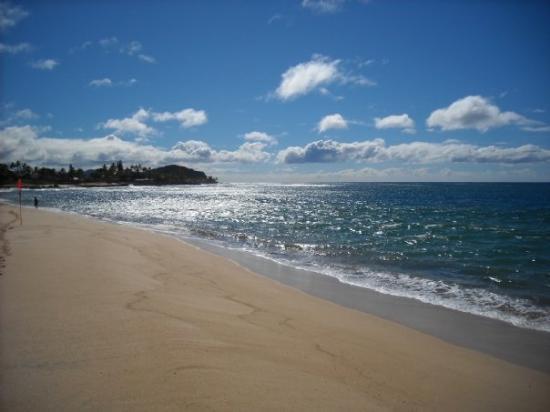 Bilde fra Ala Moana Beach Park