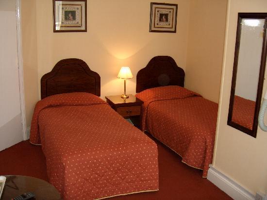 Wimblehurst Hotel: Twin Room