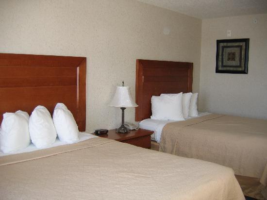 Quality Inn & Suites: Room 408