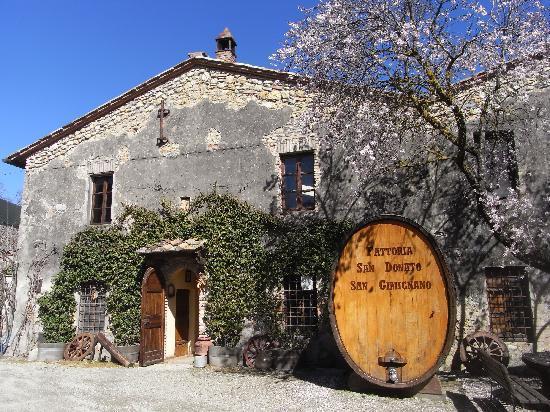 Fattoria San Donato: All'insegna del Vino