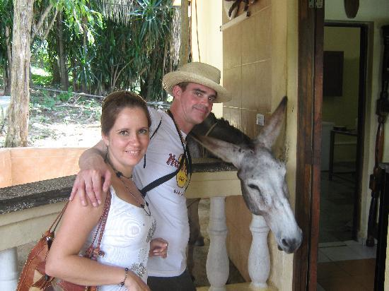 Islazul Villa El Bosque: Pancho the drinking donkey