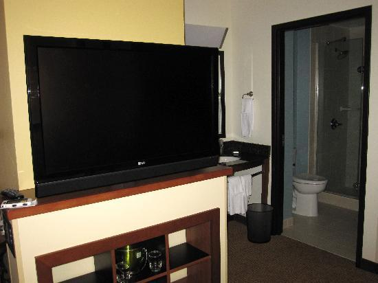 SpringHill Suites Birmingham Downtown at UAB: large flat screen tv