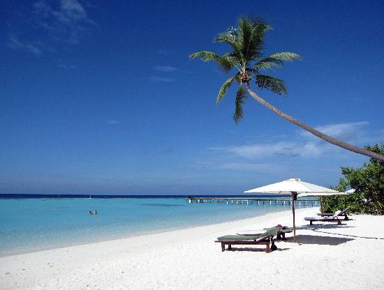 Vakarufalhi Island Resort: Foto da cartolina
