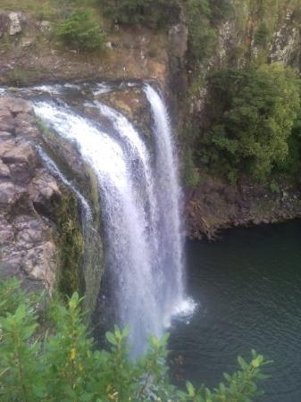 Whangarei Foto