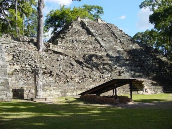 Copán-ruinene: A temple.
