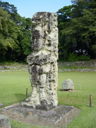 Copán-ruinene: Another stela.