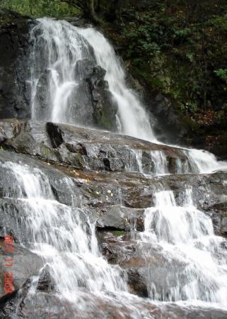 Bilde fra Great Smoky Mountains National Park
