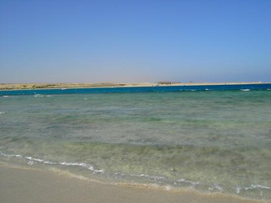 Marsa Alam, Egitto turtle bay