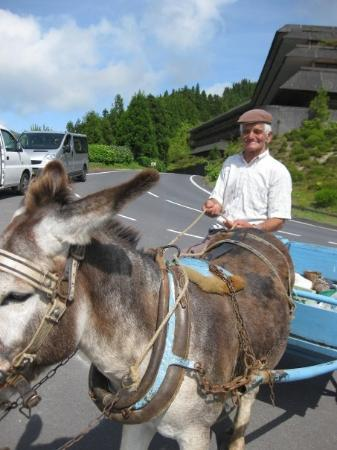 Ponta Delgada, Portugal: The donkey's name was something funny but I forgot what it was.  Good story.