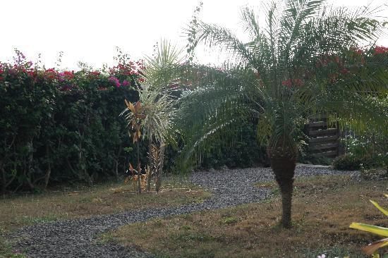 Abri Cotier: Un charmant petit jardin