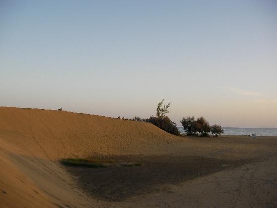Hotel Maritim Playa: Dünen von Maspalomas