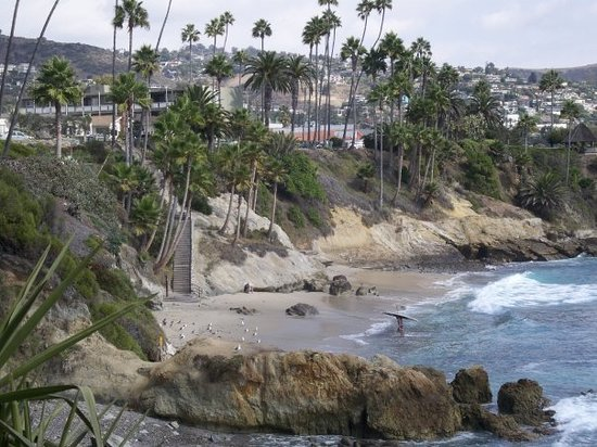 Laguna Beach Picture