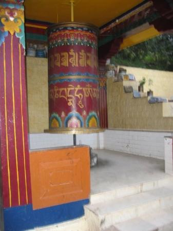 McLeod Ganj, India: Buddhist monestary headed by the Dalai Lama