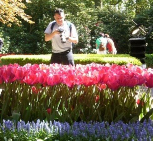 Keukenhof Tulip festival, Netherlands