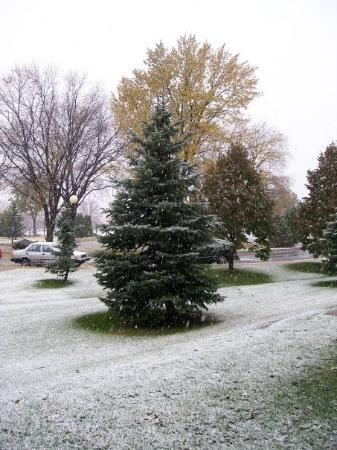 Saint Paul, MN: IT'S SNOWING!!! WHOOO!!! 10/23/2009