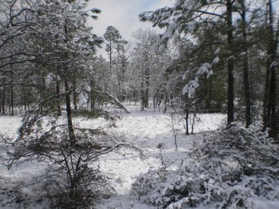 Bluffton, SC: 13 FEB 2010