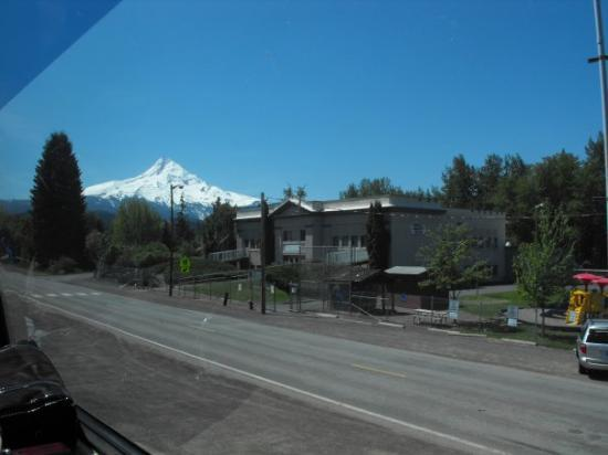 Mt. Hood Railroad: Mt. Hood with the old Parkdale School.