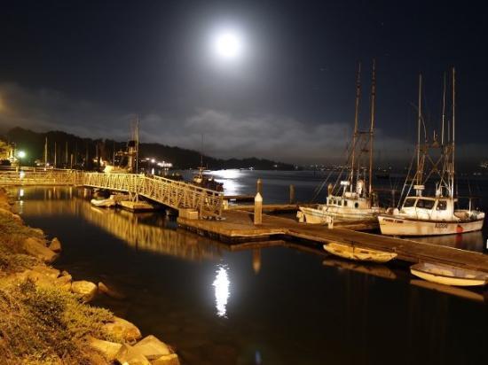 Morro Bay, CA: Morrow Bay at night.....
