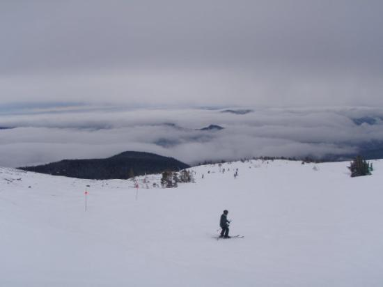 Mount Hood Meadows: the view from where ikaika rides...at the tippy top ..crazy