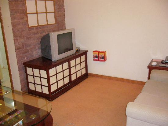 深セン羅湖ビジネスセンターマンションホテル, TV