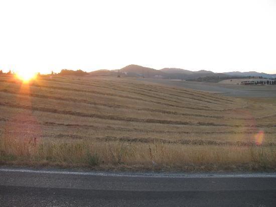 Agriturismo Agricampeggio Podere Mulinaccio: Vista del Tramonto lungo la strada..