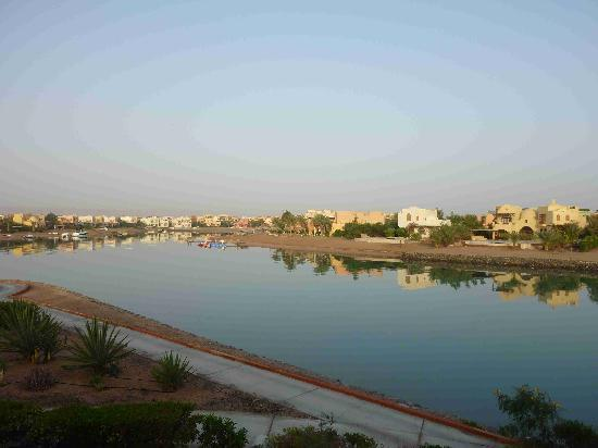 Sheraton Miramar Resort El Gouna: View from our hotel room no. 4226.
